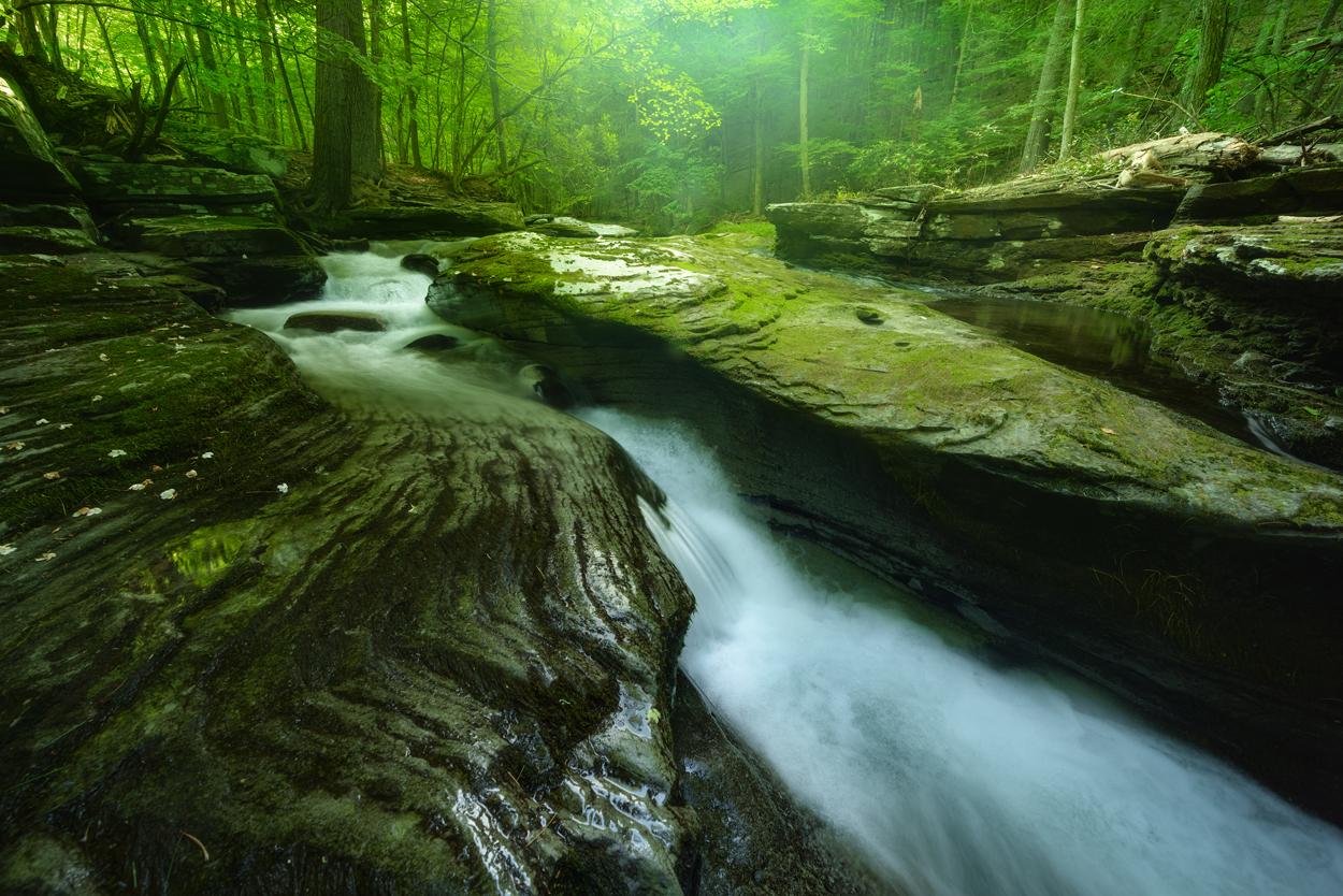trout_creek